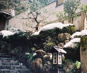garden, nature, and japan image