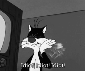 idiot, funny, and cat image
