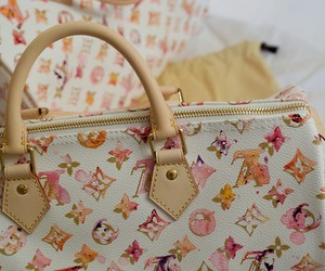 bag, Louis Vuitton, and purse image
