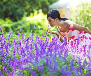 beauty, lavender, and dress image