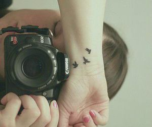 tatoo oiseau photographie image