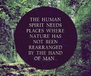 nature, quotes, and human image
