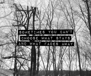 quote, text, and choose image