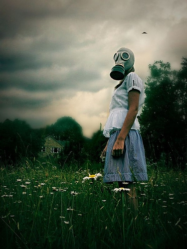 flowers, girl, and gasmask image