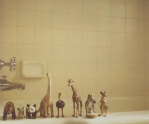 animal, toys, and bathroom image