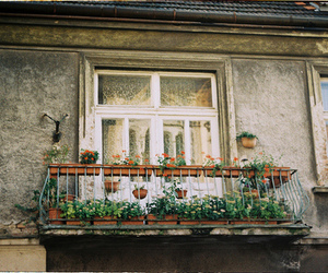 vintage, balcony, and flowers image