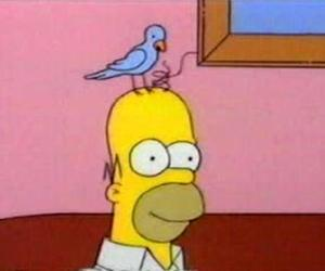 bird, cartoon, and colors image