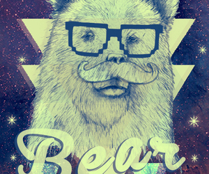 bear, hipster, and tumblr image