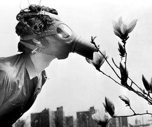 flowers, black and white, and mask image