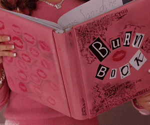 mean girls, burn book, and pink image
