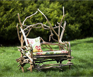 branches, chair, and nature image