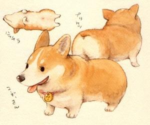 dog, cute, and corgi image