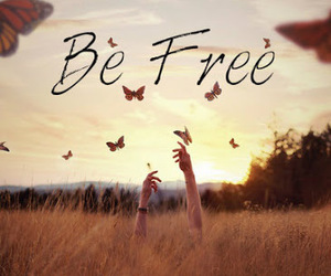 free, butterfly, and be free image