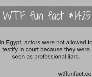 fact, awesome, and amazing image