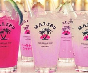 cooler, party, and drink image