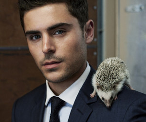 zac efron, Hot, and hedgehog image