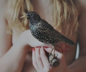 bird and girl image