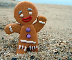 shrek, cookie, and beach image