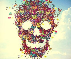 butterfly, skull, and sky image