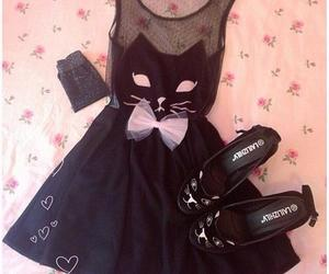 dress, cat, and fashion image