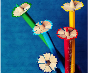 pencil, flowers, and colorful image