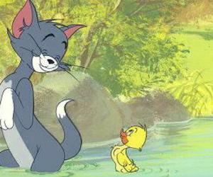 tom and jerry image