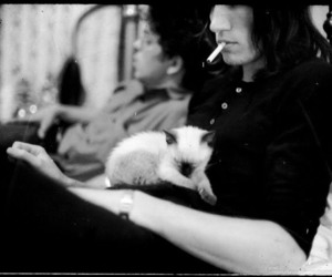cat, roger waters, and Pink Floyd image