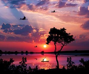 beautiful, sunset, and nature image