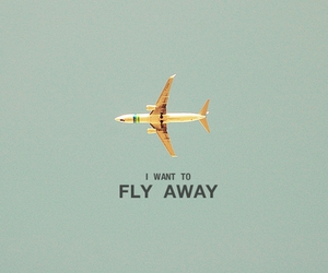fly, airplane, and plane image
