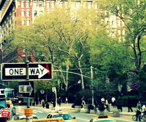 big apple, camera, and Central Park image