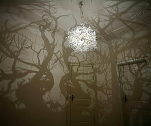 light, forest, and lamp image