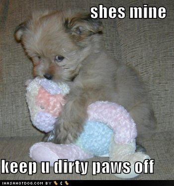 Cute Animal Quotes Funny Dogs on We Heart It