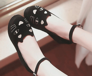 cute, shoes, and cat image