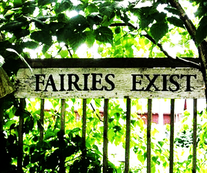 fairy, magic, and exist image