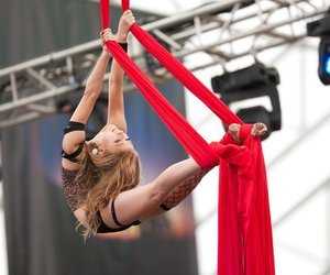 aerial silk and circuis image