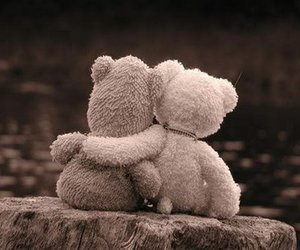 bear, love, and friendship image