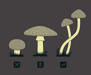 mushroom, drugs, and trip image