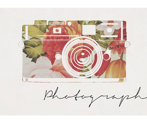 camera, flower, and lovely image