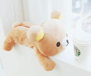 cute, rilakkuma, and starbucks image