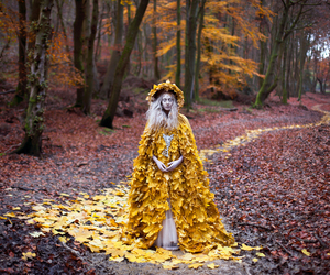 photography, forest, and kirsty mitchell image
