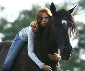 ostwind and horse image