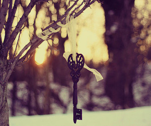 key, tree, and winter image