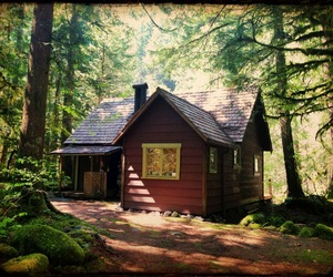 beautiful, cabin, and cottage image