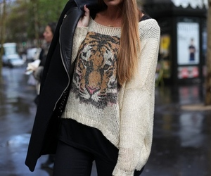 fashion, style, and tiger image