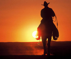horse, cowboy, and sun image