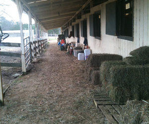barn, stable, and aiken2010 image