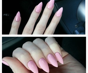 claws, brittanynicole, and nails image