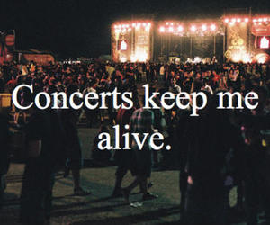 concert, alive, and music image