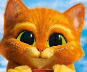 baby, dreamworks, and puss image