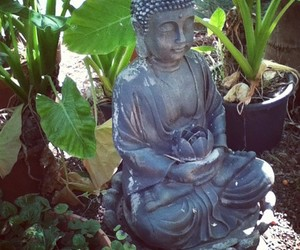 Buddha, garden, and green image